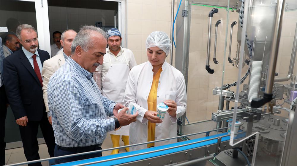 Süt Fabrikasının Yenilenme İşlemi Tamamlandı